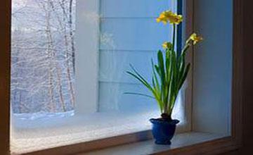 Як вибрати пластикові вікна - підбираємо вікна правильно